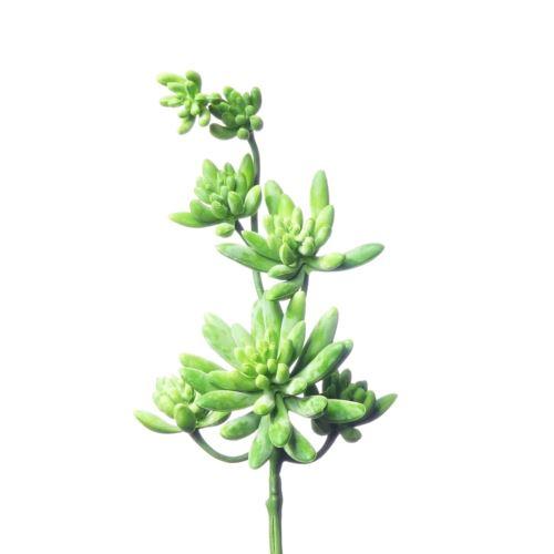 Sukulent x7 zwis zm03 32 cm Green