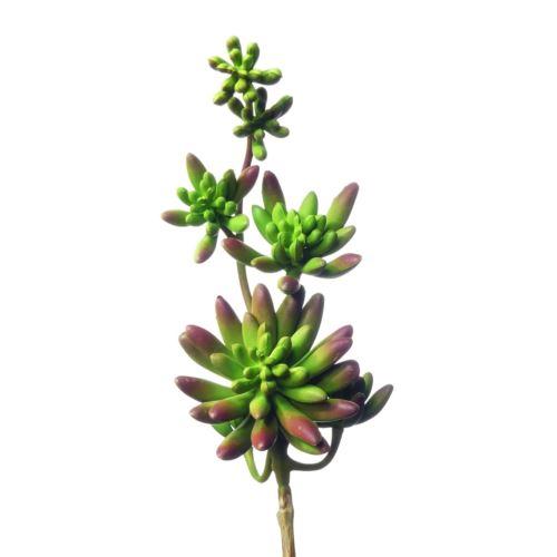 Sukulent x7 zwis zm003 32 cm Green burgundy