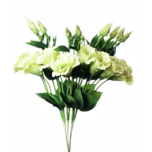 EUSTOMA SPRAY SUN357 LT.GREEN 1364