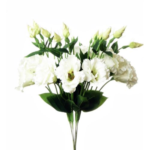 EUSTOMA SPRAY SUN357 WHITE 1175