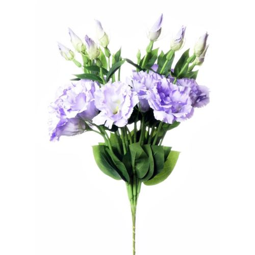 EUSTOMA SPRAY SUN357 POWDER VIOLET 2387