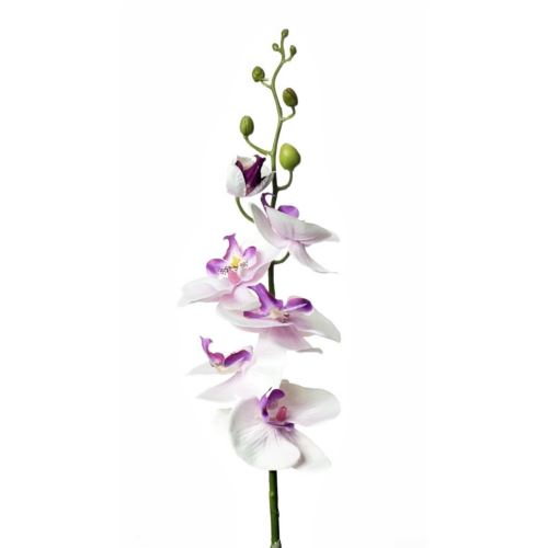 SINGLE ORCHID SUN437 LT VIOLET 1428