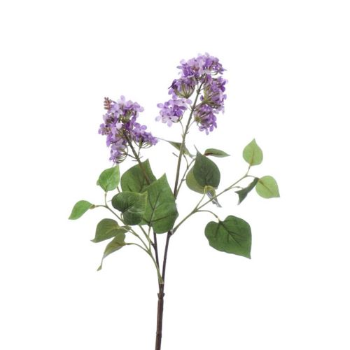 Gałązka-Bez x2 /9292 Lt  violet