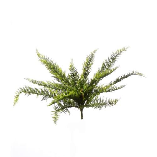 LARGE FERN PAPROĆ TIK007 POWDER GREEN