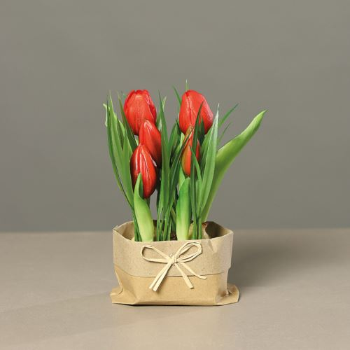 Tulpen (PU)in mud with Tüte, 19cm, red, 12/48