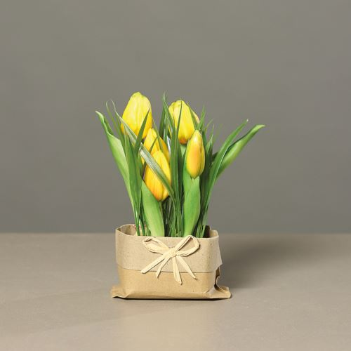 Tulpen (PU)in mud with Tüte, 19 cm, yellow, 12/48