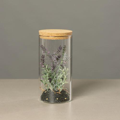 Lavendula in Glas, 21 cm, 6/24
