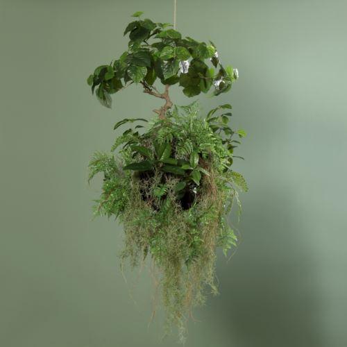 Fern Avatar Ball with plant, 100 cm, 1/1