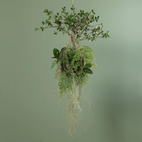 Fern Avatar Ball with plant, 70 cm, 1/3