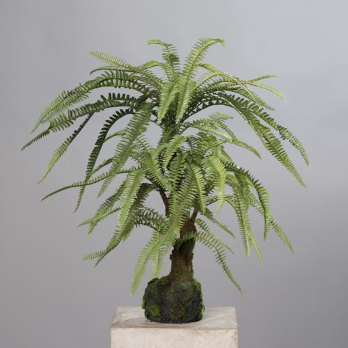 Fern in mud, 63 cm, green, 4/16