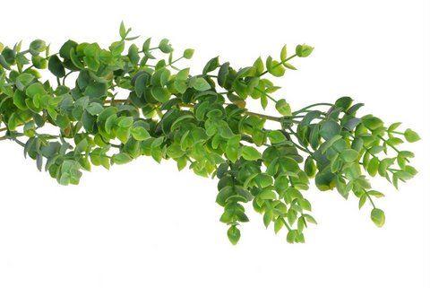 Girlanda eukaliptus 165cm