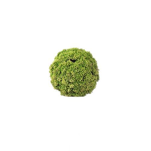Kula sukulent drobny - natural touch ZM005