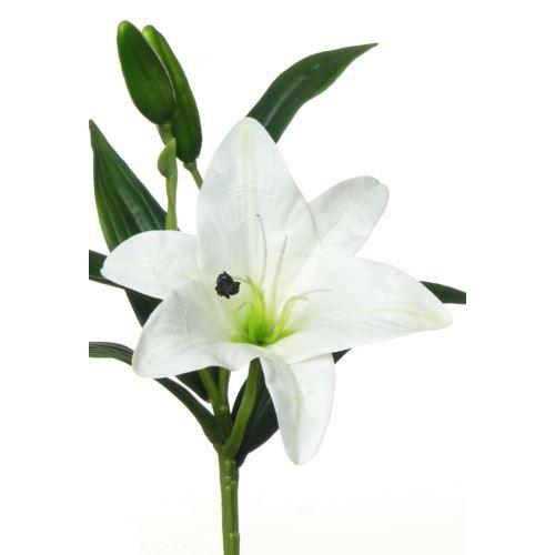 SHORT LILY 3D MST1623 WHITE