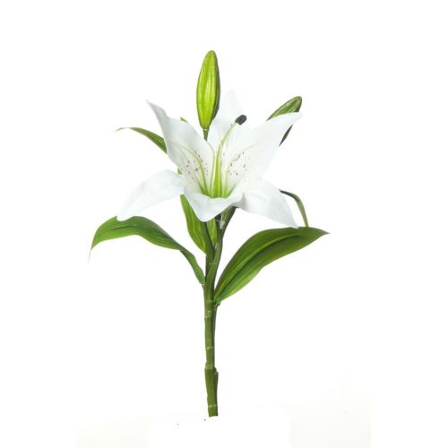 SINGLE LILY MST169 WHITE 36cm