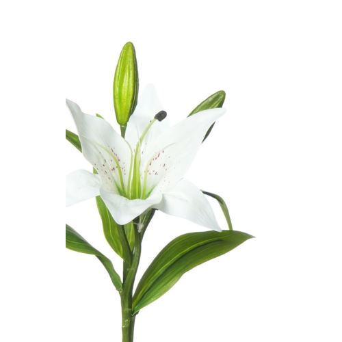 SINGLE LILY MST169 WHITE