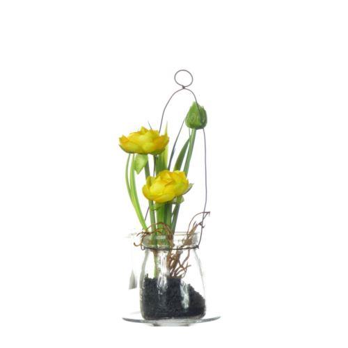 Ranunculus w szkle 18 cm 57107-1 yellow