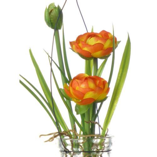 Ranunculus im Hanging glas18 cm 57107-1 orange