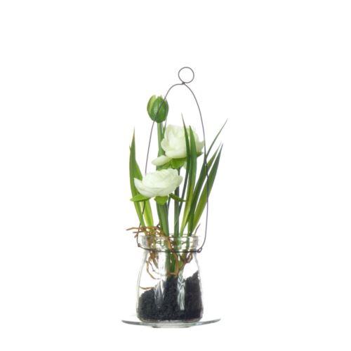 Ranunculus w szkle 18 cm 57107-2 cream