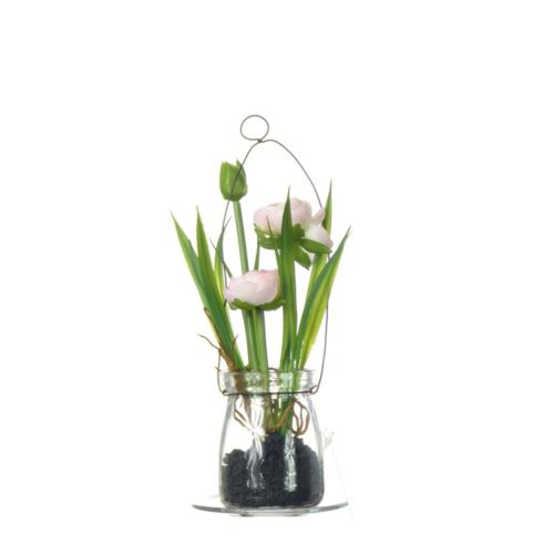 Ranunculus i w szkle 18 cm 57107-2 pink