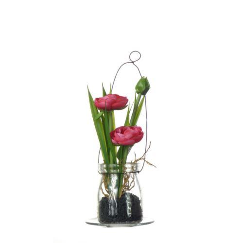 Ranunculus w szkle  57107-2 fuchsia