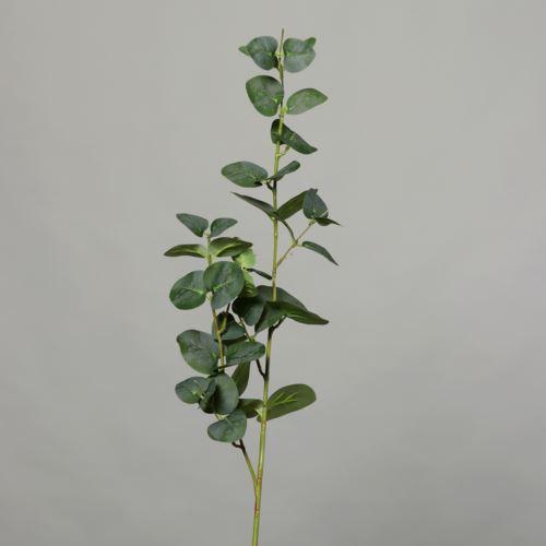 Eukaliptus - Branch x2 100cm 54907-01