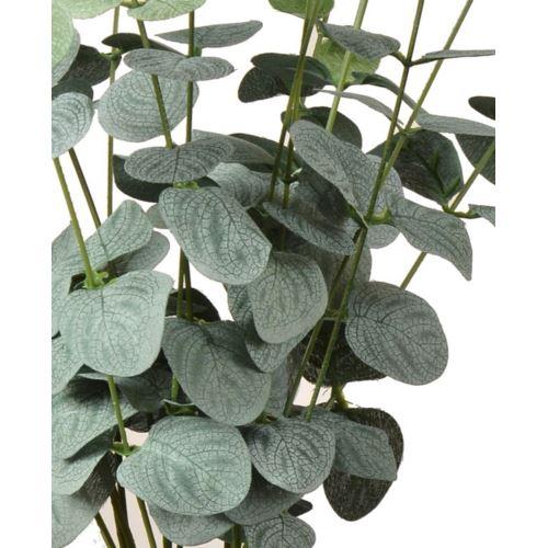 Bukiet eukaliptus x16 49cm powder green