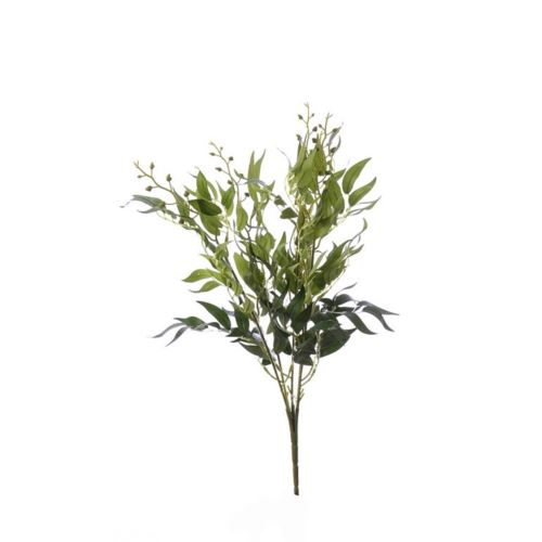 Bukiet ruskus x5 48 cm  green