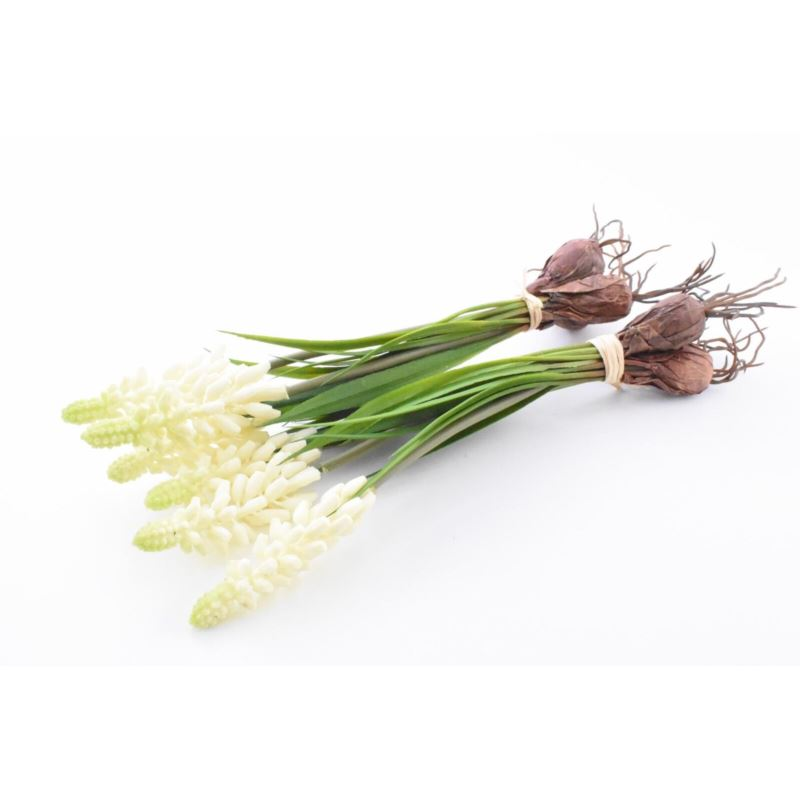 Muscari with onion, 22 cm, cream