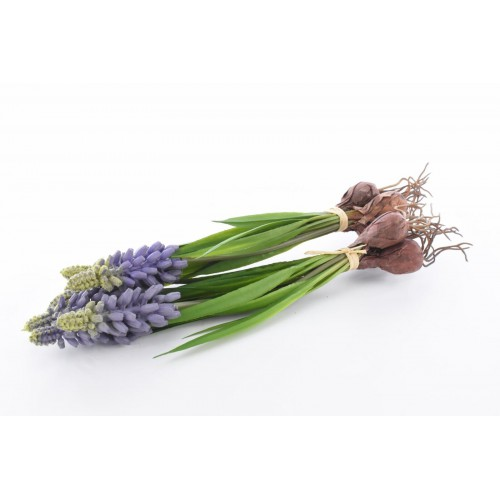 Muscari with onion, 22 cm, cream,36/216 3 pcs in b