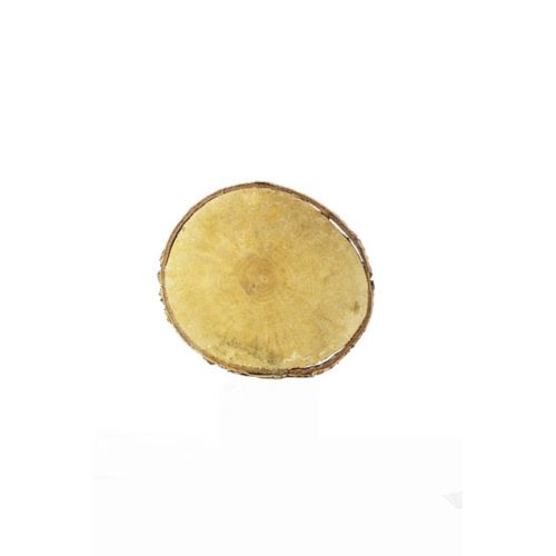 Plaster drewna brzoza (24) śr. 23-26cm  z-12