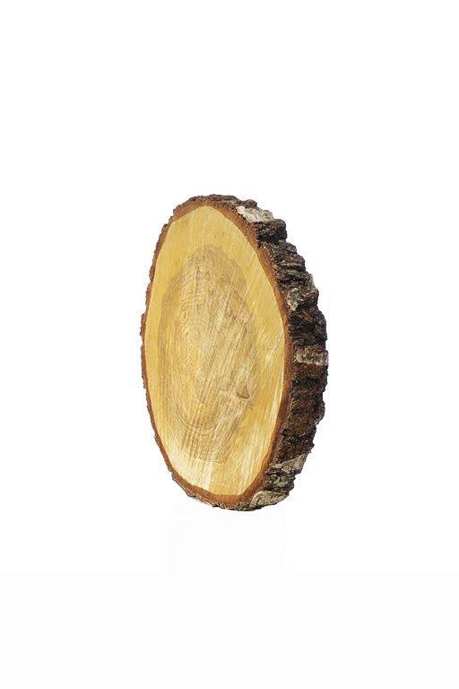 Plaster drewna brzoza (35) śr. 34-38cm  z-22