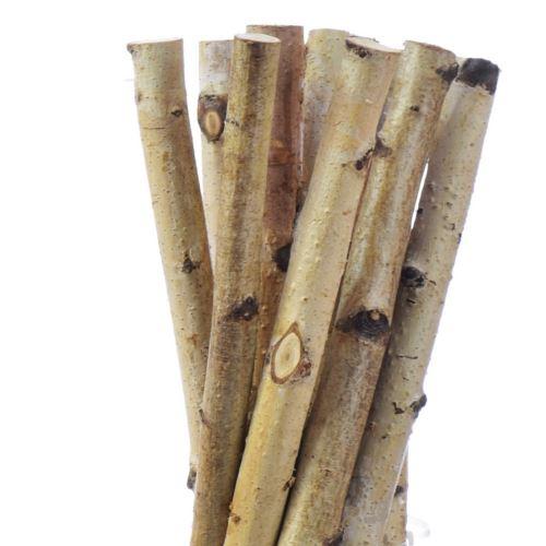 Patyki brzozowe grube 50 cm z-18