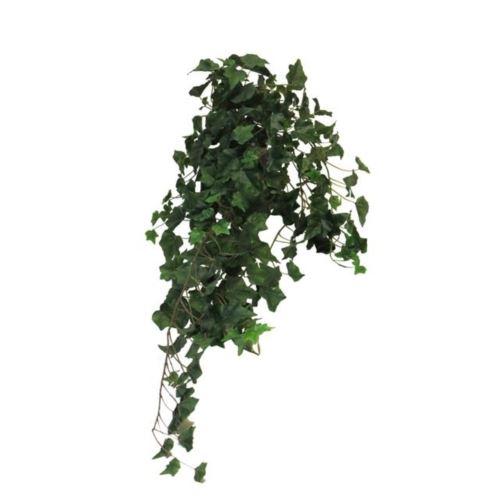 Ivy Chicago hanger XL green 100cm (259 lvs)
