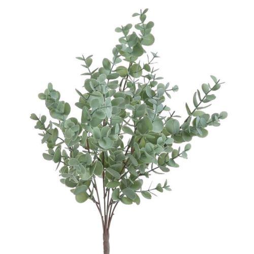 Eukaliptus x7 43cm