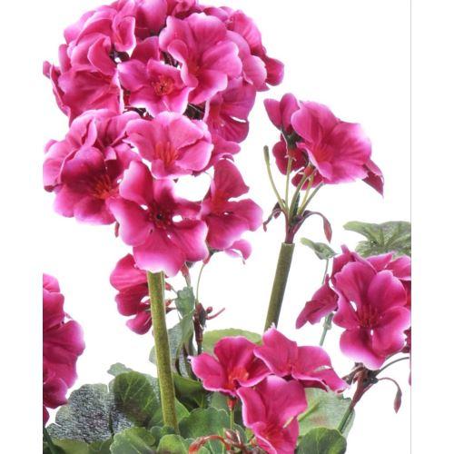 Pelargonia bukiet  x9 48cm  AX39048 pink