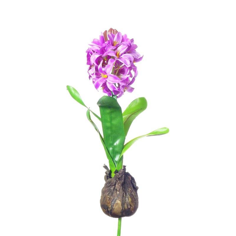 HIACYNT Z CEBULĄ 30 cm purple CV10555