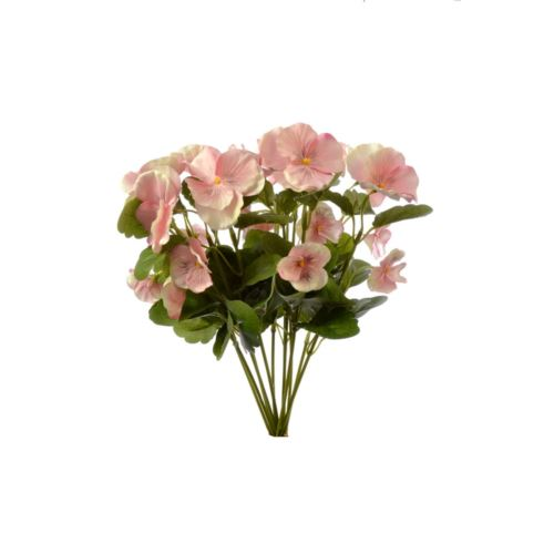 Bratek single pansy 30cm sun417 Lt.Pink