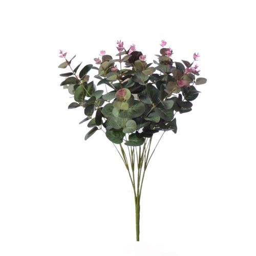 Bukiet eukaliptusa liu007 burgundy green