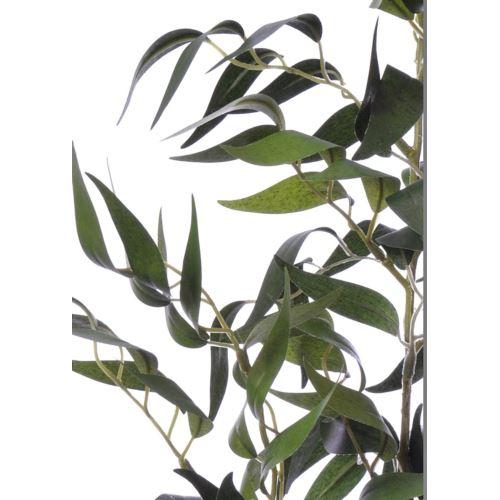 Gałązka ruskus liu357  green