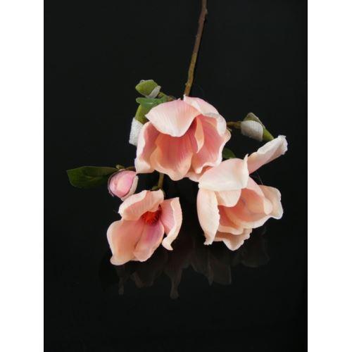 Magnolia gałązka x 3  pink