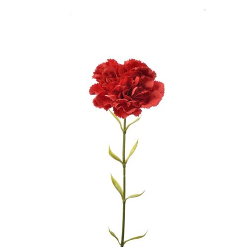 SINGLE CARNATION SUN005 RED 928A