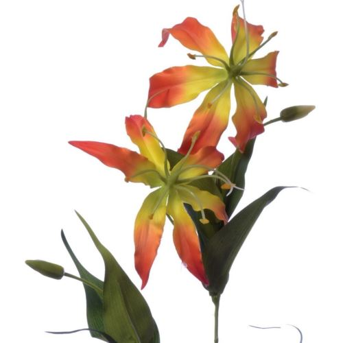 Gloriosa spray 80cm sun588 orange