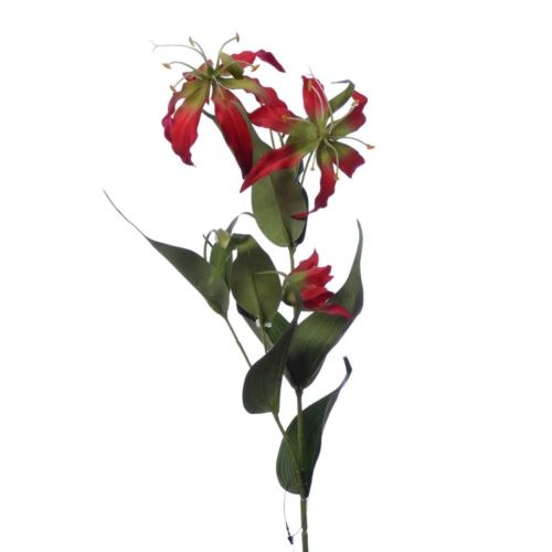 Gloriosa spray 80cm sun588 red green