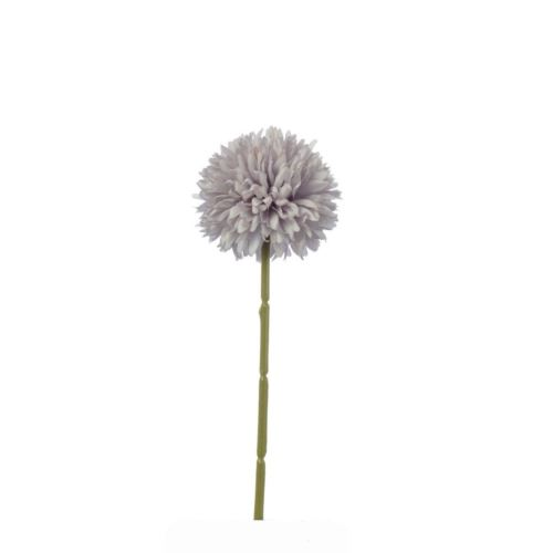 CZOSNEK ALLIUM SINGLE 29 CM LAVENDER