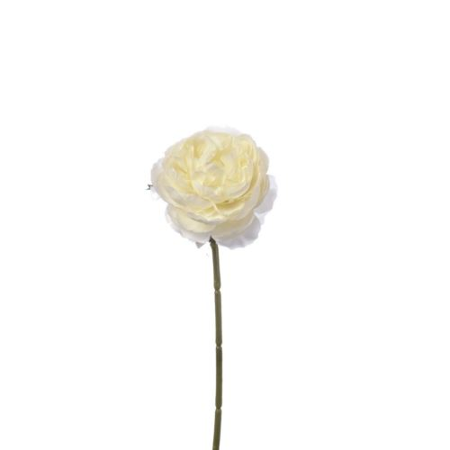 PEŁNIK RANUNCULUS SINGLE 29 CM CREAM