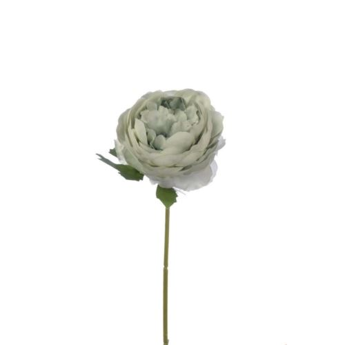 PEŁNIK RANUNCULUS SINGLE 29 CM POWDER MINT
