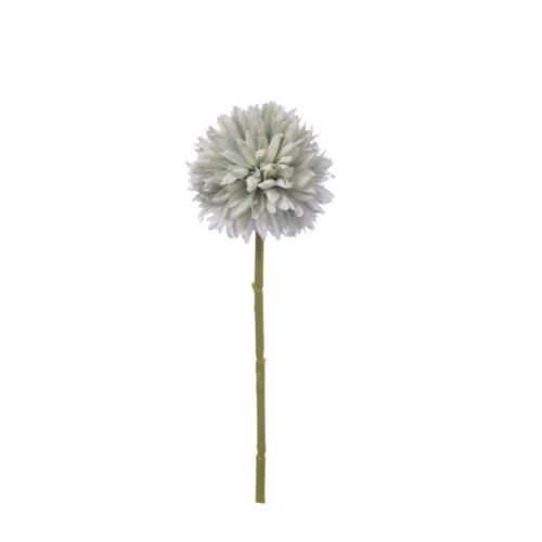 CZOSNEK ALLIUM SINGLE 29 CM POWDER MINT