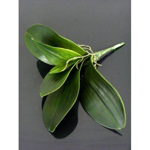 Liść do storczyka 28cm A410 green