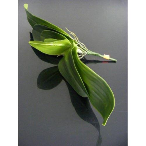 Liść do storczyka 36cm A710 green