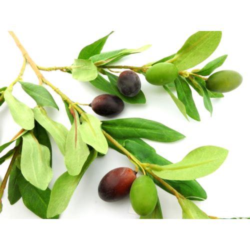 Gałązka oliwna olive branch 83cm green